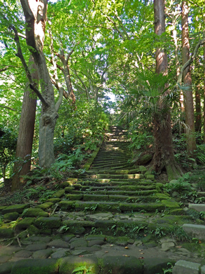 01-03瑞泉寺夏09旧階段.jpg