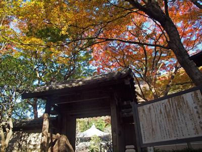 05-2瑞泉寺秋12山門紅葉.jpg