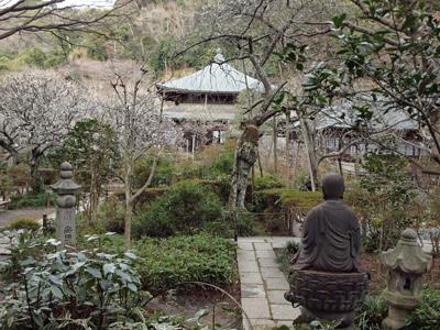 05瑞泉寺本堂前浅い春.jpg
