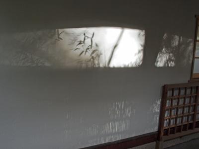 12報国寺竹の影絵.jpg