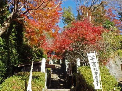 13杉本寺入口.jpg