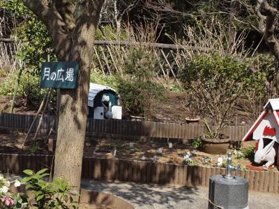 46明月院月の広場.jpg