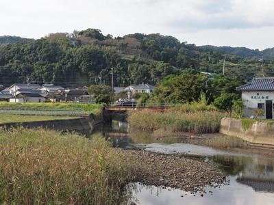 10日野江城の山.jpg