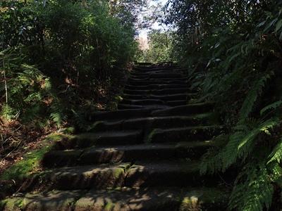 10瑞泉寺鎌倉石の階段.jpg
