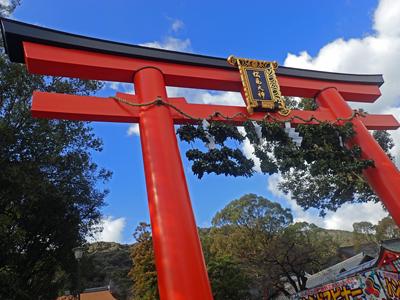11松尾大社鳥居.jpg