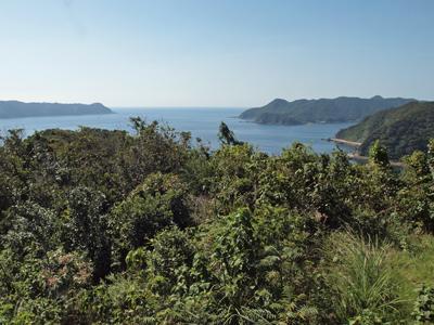 35奈留島展望台から1.jpg